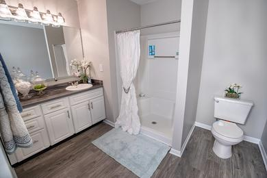 Large Bathrooms | Bathrooms featuring wood-style flooring and large mirrors.