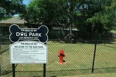 Dog Park | Bring your four legged friend down to our on-site dog park.
