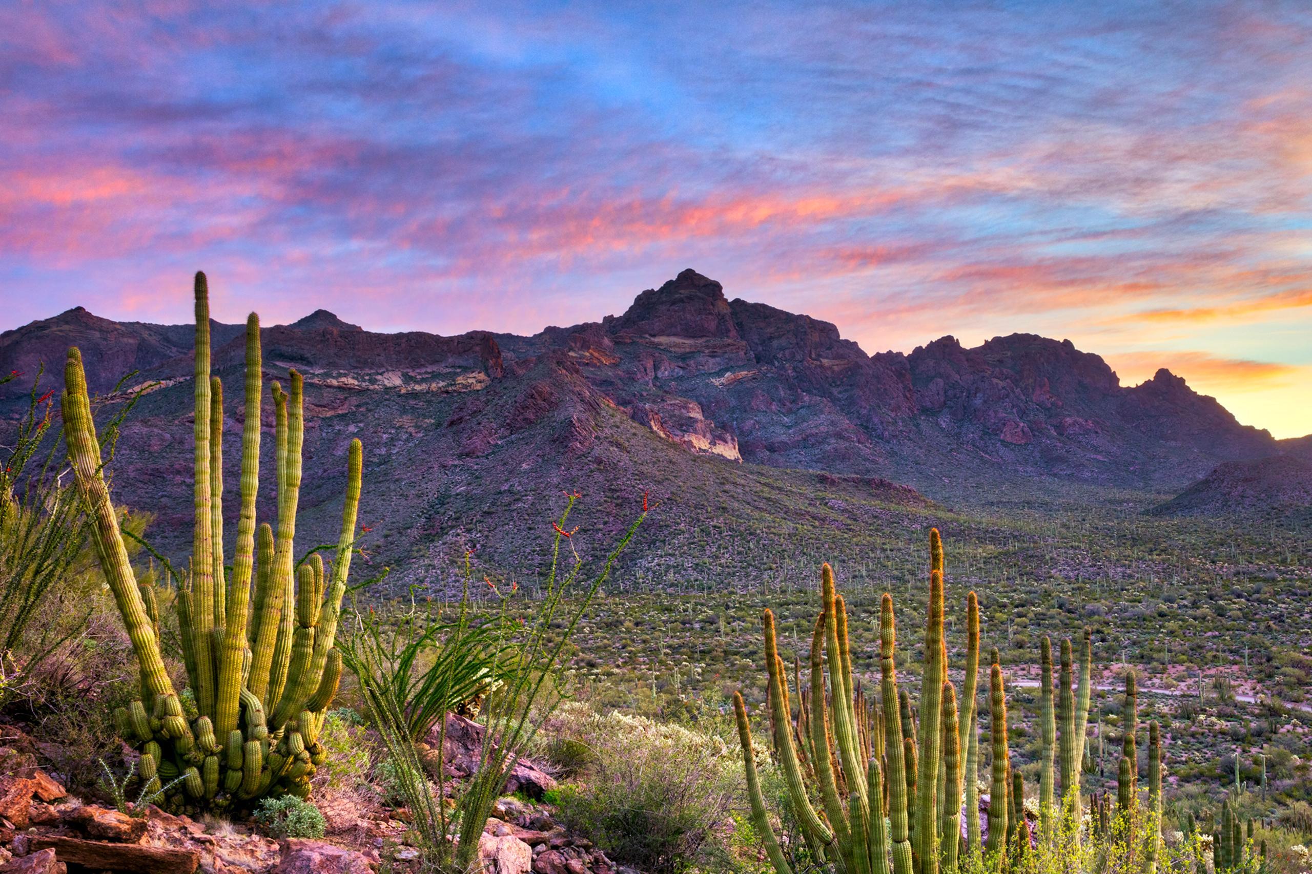 Apartments in Buckeye Arizona | Buckeye Apartments for Rent