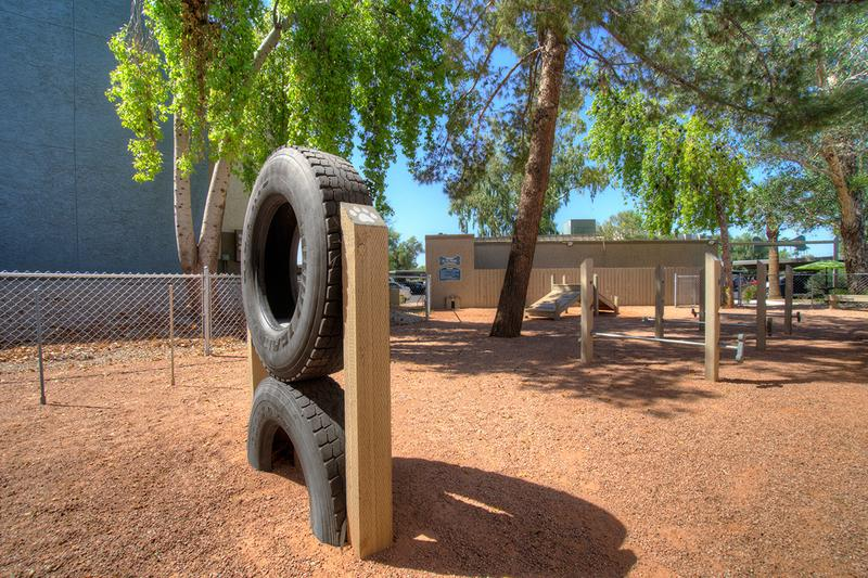 Agility Equipment | Our off-leash dog park features plenty of agility equipment.
