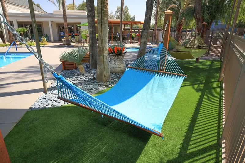 Hammock Garden | Lay out in our hammock garden located in the pool area.