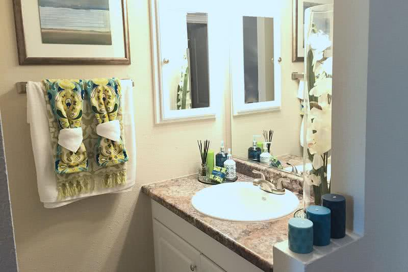 Bathroom | Newly renovated bathrooms featuring a large mirror and a medicine cabinet.