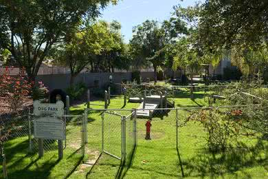 Dog Park | Exchange on the 8 is a pet friendly community and has an off-leash dog park.