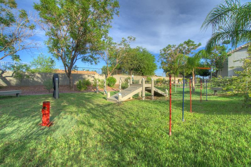 Agility Equipment | Our dog park includes plenty of agility equipment so your pup can get all the exercise they need.