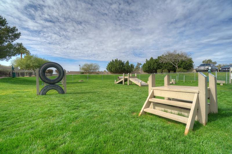 Agility Equipment | Our dog park features plenty of agility equipment as well.