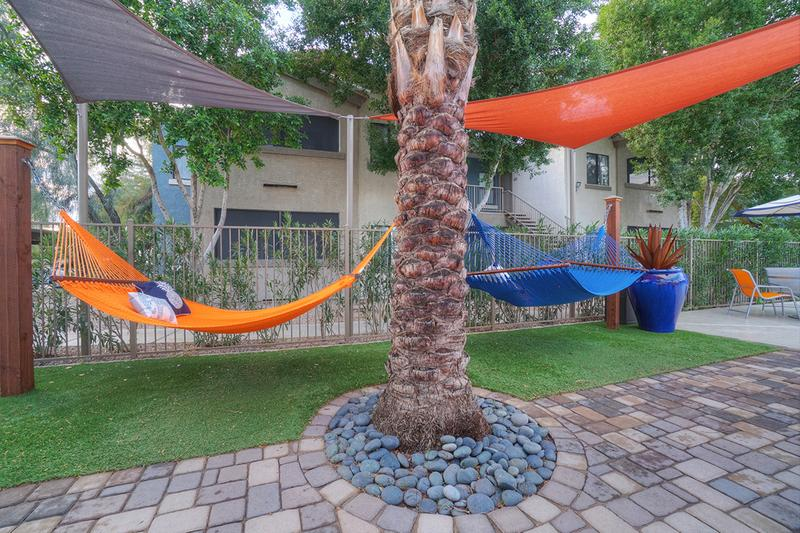 Hammock Garden | Lay out in our hammocks by the pool or have a picnic.