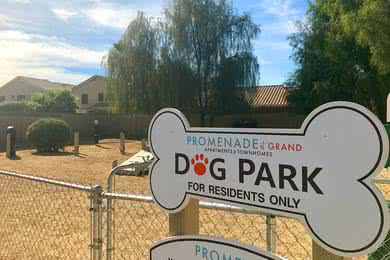 Dog Park | Bring your dog down to our dog park featuring agility equipment.