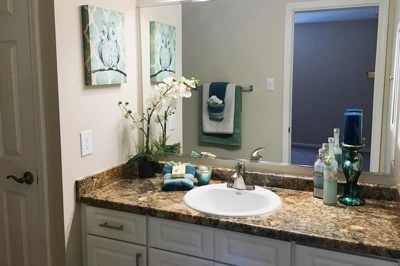 Master Bathroom | Master bathrooms with updated counter tops, large mirrors, a a spacious linen closet.