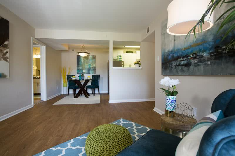Living Room | Spacious, open living rooms with wood-style flooring and large windows.