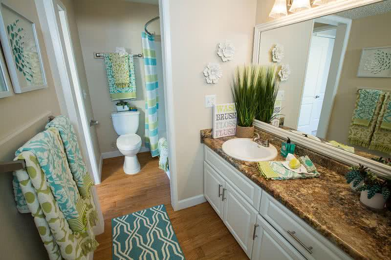 Bathroom | Newly remodeled bathrooms with updated countertops and cabinetry.