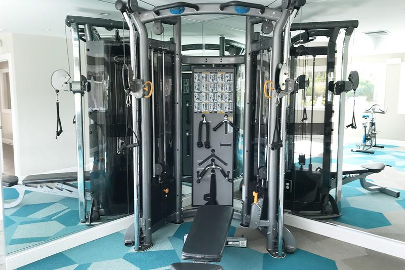 Weight Training Equipment | Our fitness center features all the cardio and weight training equipment you need!