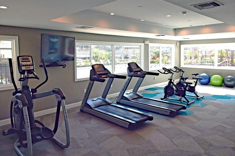 24-Hour Fitness Center | 24-Hour Fitness Center featuring impressive cardio equipment.
