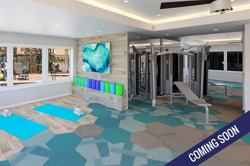 24-Hour Fitness Center | 24-Hour Fitness Center with impressive cardio equipment. Coming Soon!