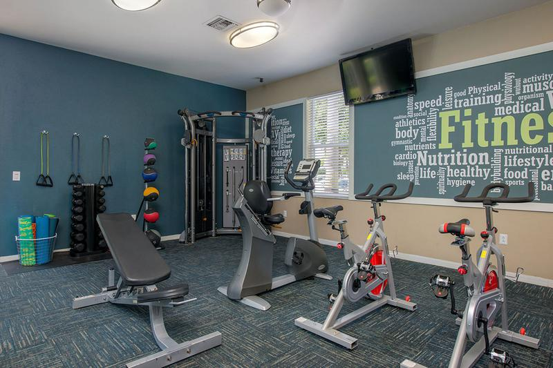 Weight Training Equipment | Our fitness center features all the weight training equipment you need.