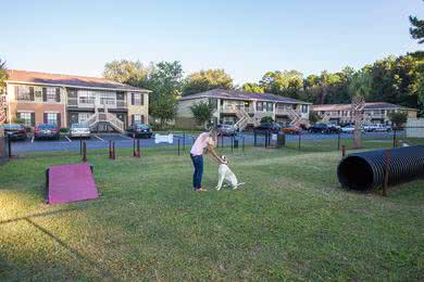 Dog Park | Take your dog down to our dog park to run around and use our agility equipment.