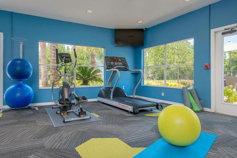 Cardio Equipment | Our fitness center includes plenty of cardio and weight training equipment you need for a full body workout.