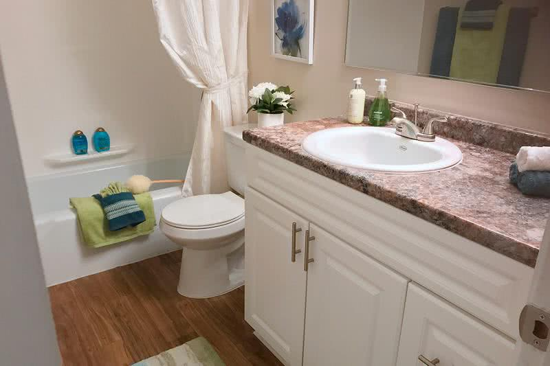 Updated Bathroom | Newly updated bathrooms featuring wood-style flooring, granite-style counters, and large mirrors.