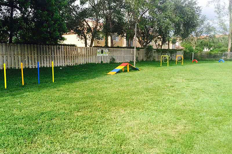Agility Equipment | Our dog park features agility equipment for your pup to get some exercise.