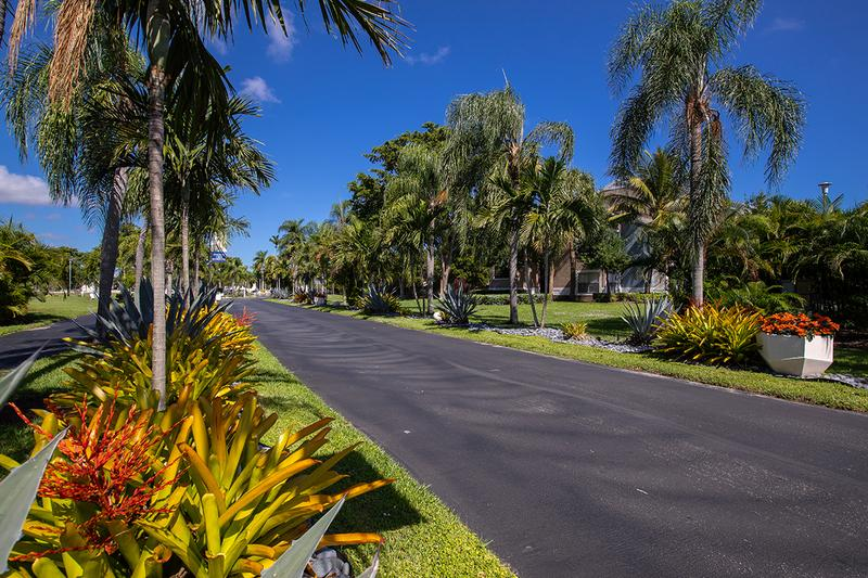 Located on Reflections Boulevard | You'll be welcomed home by fountains and a dramatic, palm tree-lined entrance!