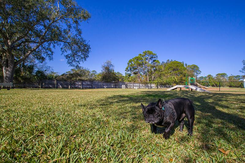 Dog Park | Bring your furry friend to our community dog park for some exercise.