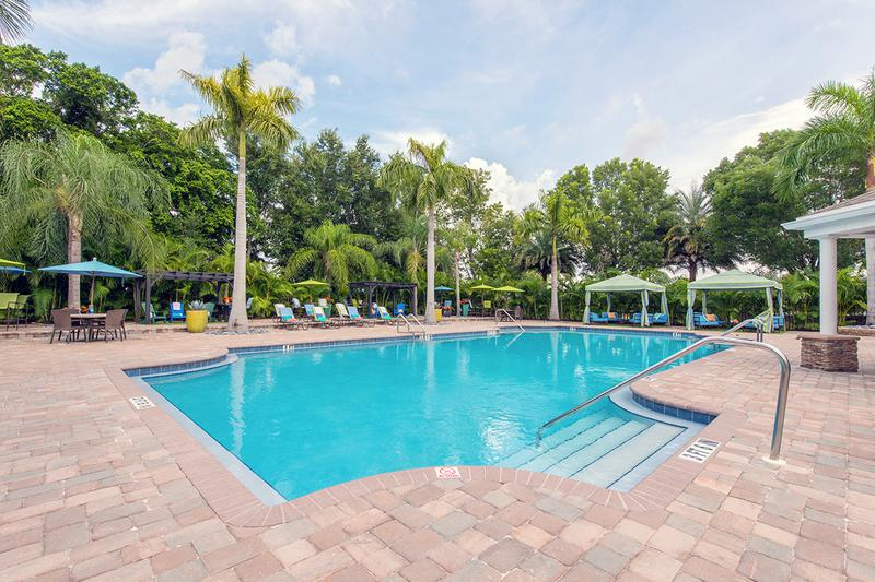 Resort-Style Pool | You'll fee like you are on vacation with our resort-style swimming pool.