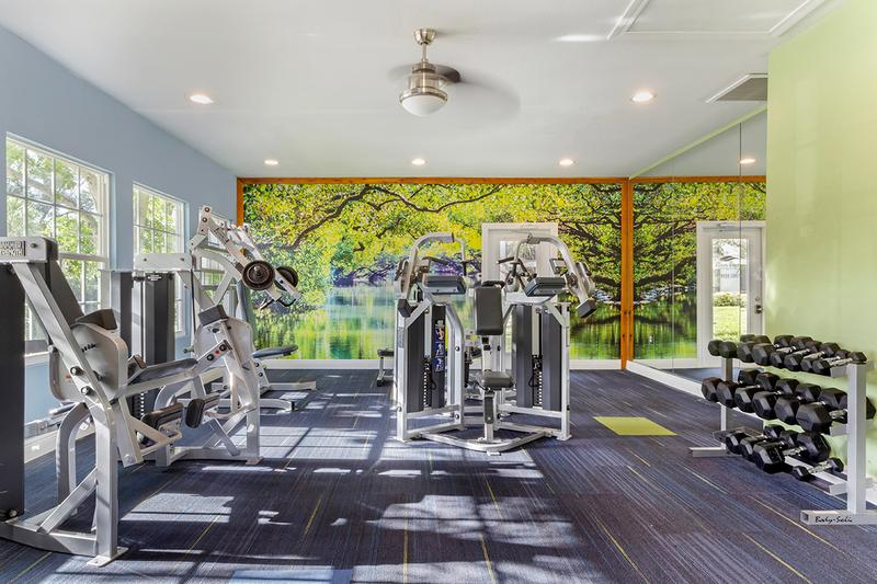 Weight Training Equipment | Our fitness center also features plenty of weight training equipment.