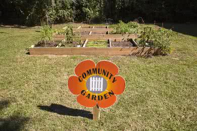 Community Garden | Got a green thumb? You'll love gardening in our community garden!
