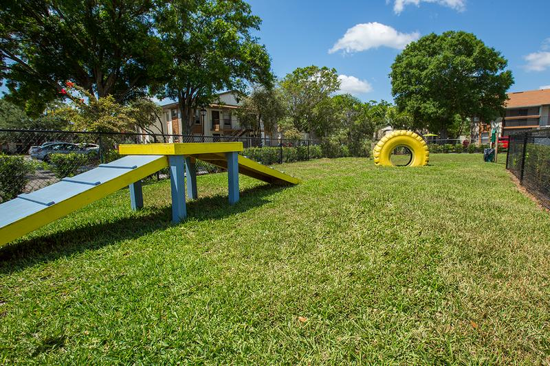 Bark Park | Our bark park features plenty of agility equipment to keep your dog in great shape.
