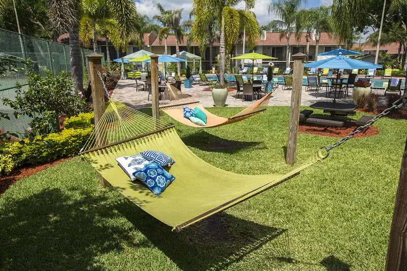Hammock Garden | Lounge in our hammock garden located next to the pool.