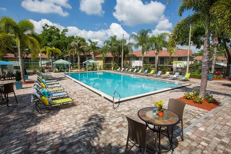Poolside Loungers | Plenty of poolside loungers for you to lay out in the Florida sunshine!