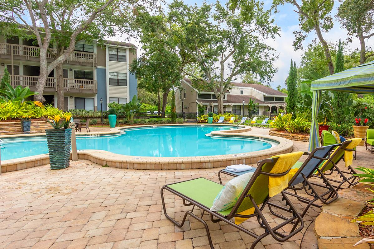 Palm Harbor Apartments For Rent Stillwater Palms Apartments