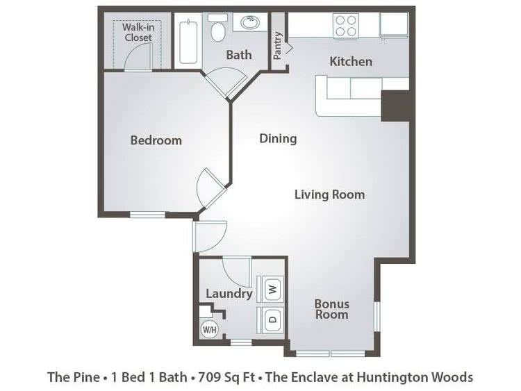 2D | The Pine contains 1 bedroom and 1 bathroom in 709 square feet of living space.