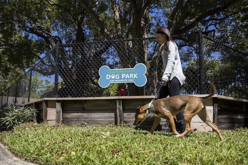 Off-Leash Dog Park | Bring your four legged friend(s) to our off-leash Dog Park including agility equipment to keep them active.