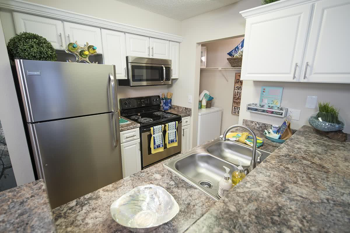 Apartments For Rent In Tampa Fl Near Usf
