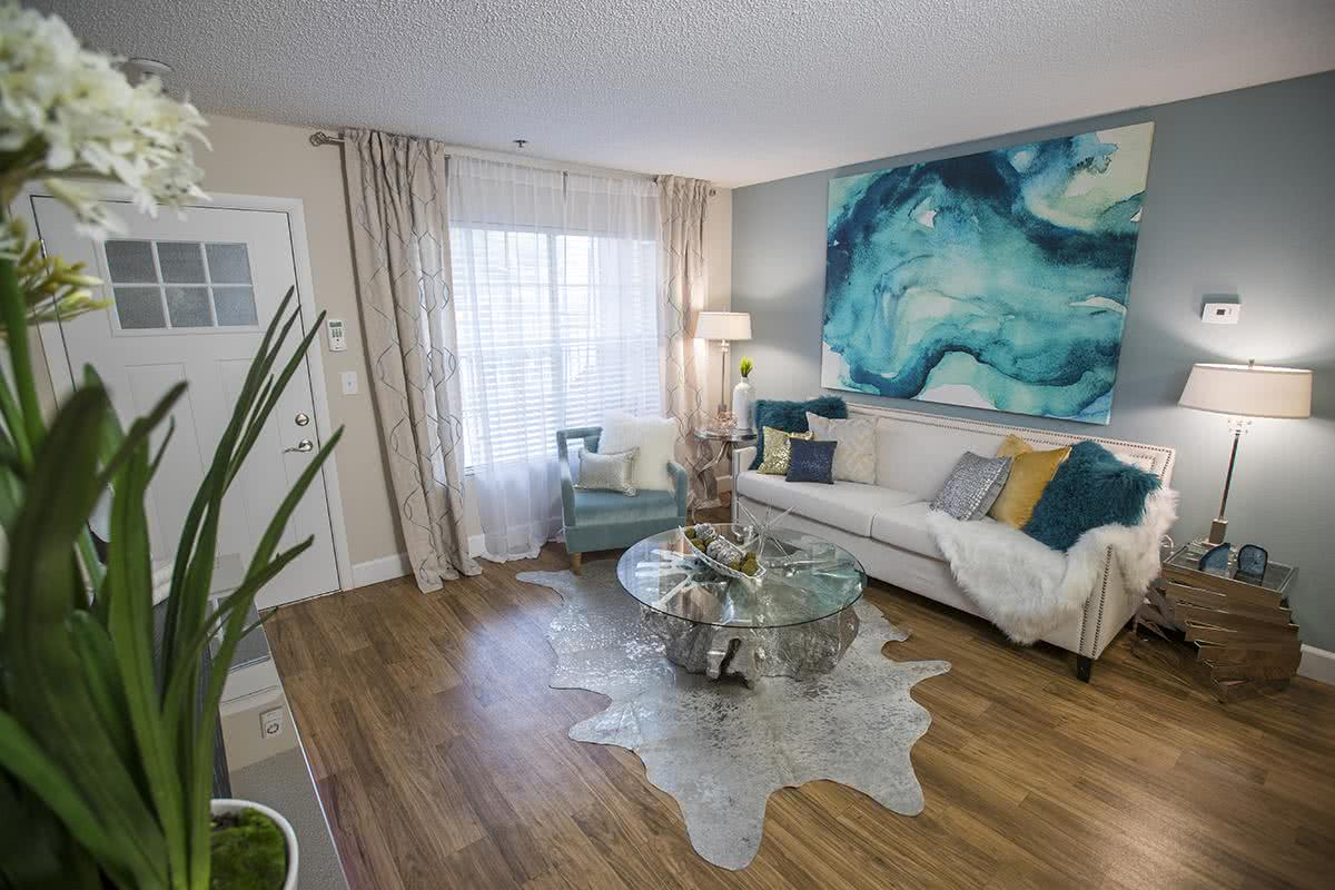 tampa fl apartments for rent near usf allister place apartments
