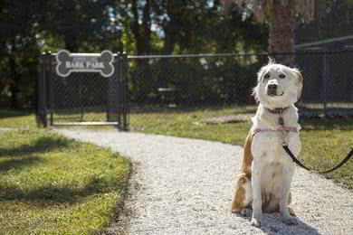 Dog Park | Your furry friend will love playing in our off-leash Bark Park!