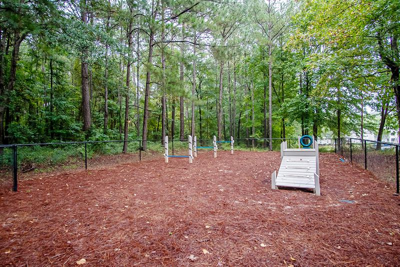 Dog Park | We offer pet friendly apartments in Macon. We even have an off-leash dog park onsite!
