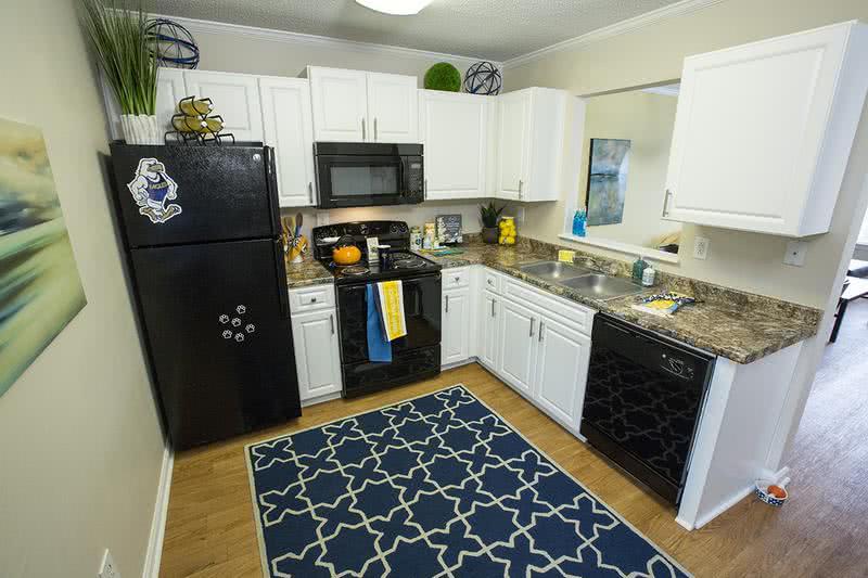 Apartment Photos Amp Videos Southern Downs In Statesboro Ga