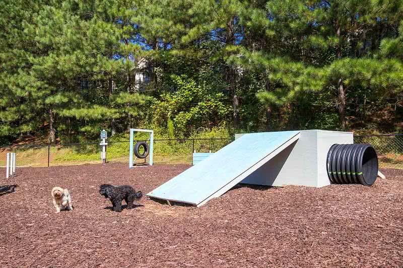Dog Park | Bring your furry friend to our off-leash dog park located right on site! They will love to run around and use the agility equipment.
