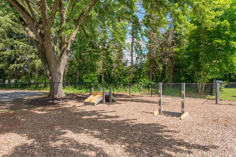 Dog Park | Alpine Commons offers pet friendly apartments in Amherst with an off-leash dog park onsite.