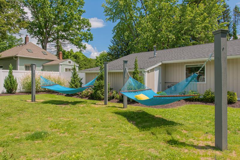 Hammock Garden | Lay out in our hammock garden or play a game of cornhole with a friend.