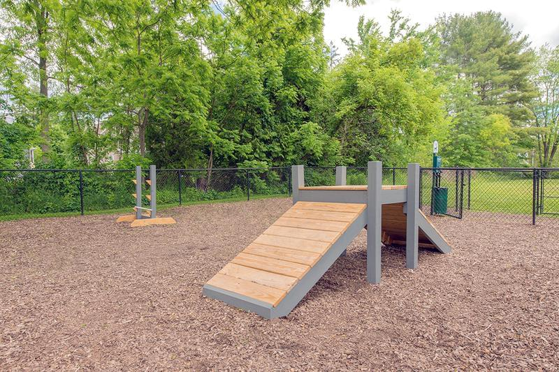 Agility Equipment | Our off-leash dog park features agility equipment for your pup.
