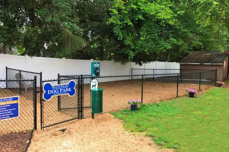 Dog Park | Bring your four legged friend down to our off-leash dog park to run around.