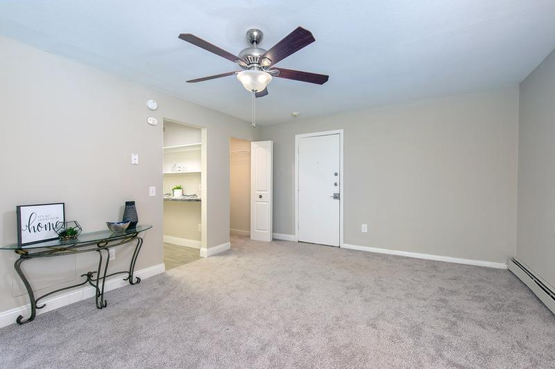 Living Area | Our spacious studios will give you plenty of room to live comfortably. Living area features a ceiling fan and plush carpeting.