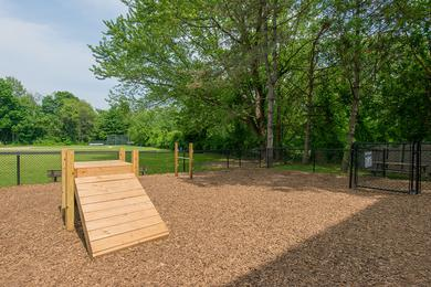 Dog Park | Bring your four legged friend down to our dog park to run around.