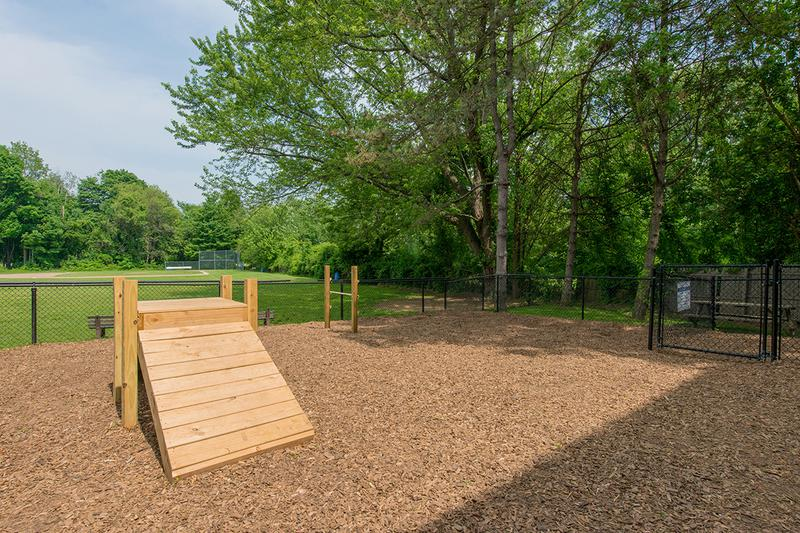Off-Leash Dog Park | Bring your dog to our on-site dog park so they can get all the exercise they need!
