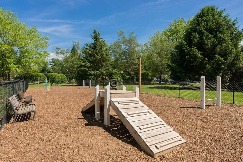 Off-Leash Dog Park | Sugarloaf Estates offers pet friendly apartments in Sunderland and even have an off-leash dog park right in our community!
