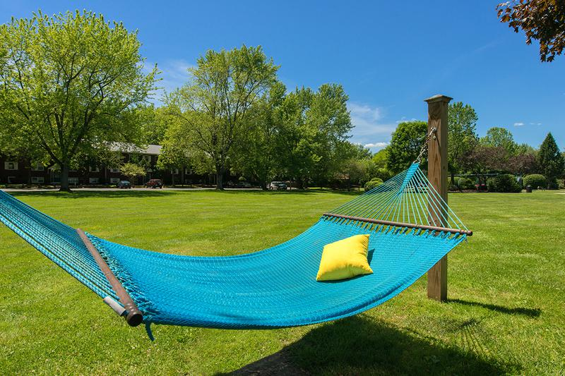 Hammock Garden | Lay out and soak in the sun in our hammock garden.