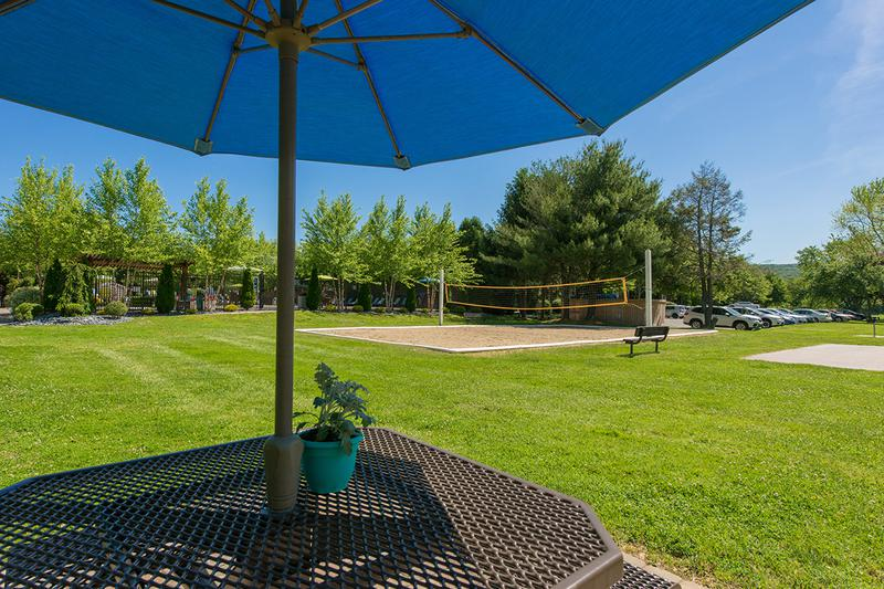 Picnic Area | Enjoy a picnic at one of our picnic areas featuring charcoal grills.