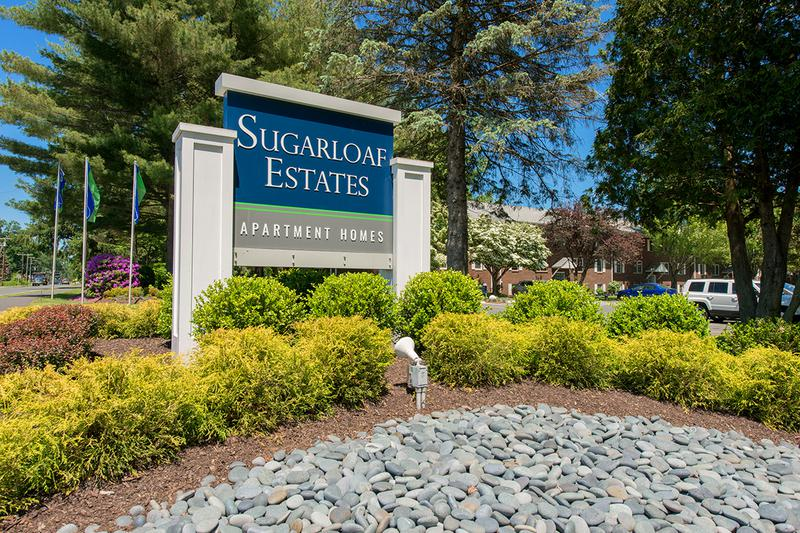 Welcome Home to Sugarloaf Estates | Come see what makes Sugarloaf Estates such a popular choice for UMass students!